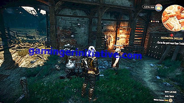 The Witcher 3 Guide: So entsperren Sie den Master Armorer