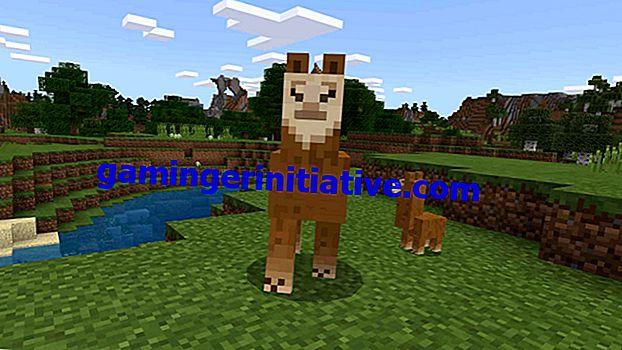 Minecraft: Cara Membiakkan Llamas