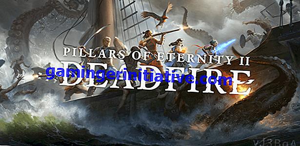 Best Pillars of Eternity 2 Deadfire Companions: Semua 7 Peringkat