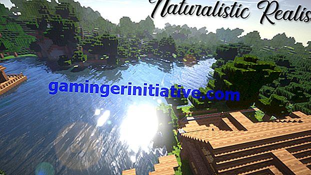 Minecraft: Beste Version 1.14 Texturpakete