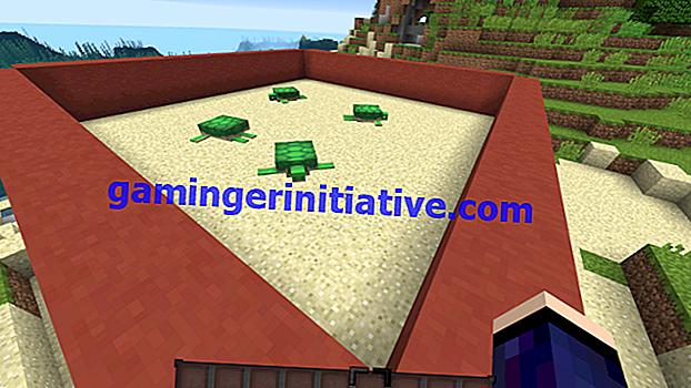 Minecraft: Wie man Schildkröten züchtet