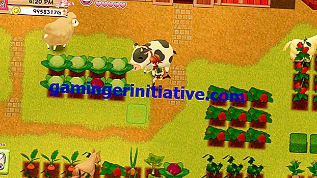 Harvest Moon Light of Hope:Co-Op Multiplayerのプレイ方法