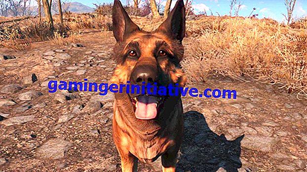Fallout 4: Wie man Rüstung für Hundefleisch bekommt und es ausrüstet