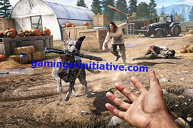 Far Cry 5: есть ли варианты романтики?