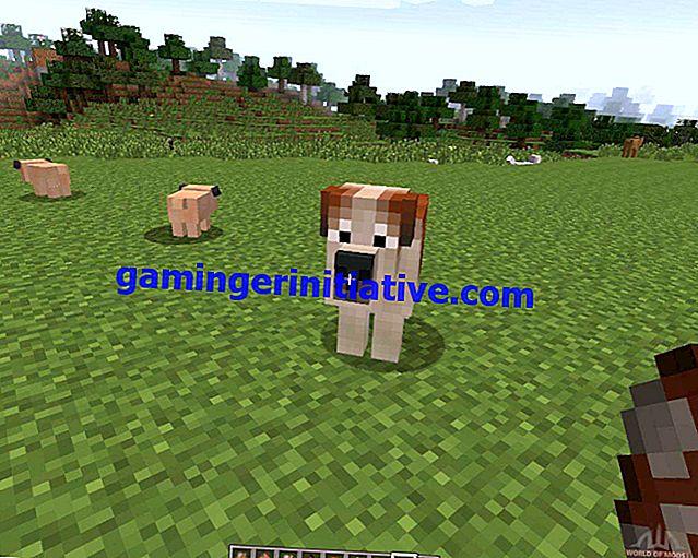 Minecraft: Comment élever des chiens
