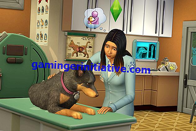 Sims 4 Cats & Dogs: Wie man ein Tierarzt ist (Veterinärkarriere)