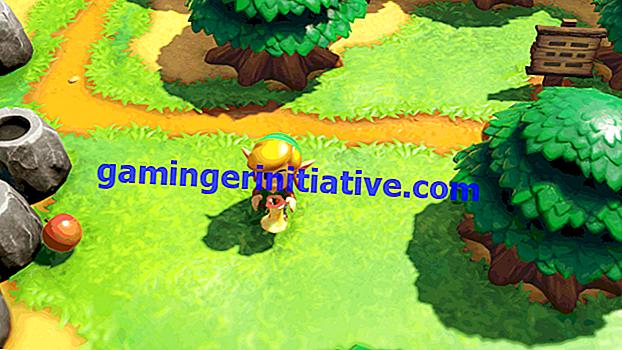 Zelda Links Erwachen: Wie man Hibiskus bekommt