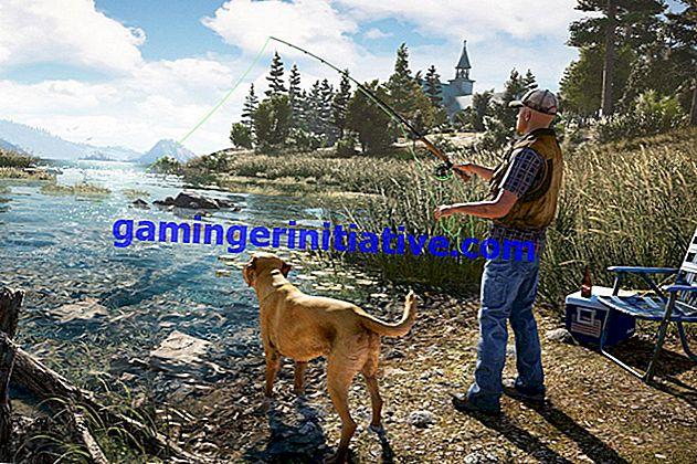 Far Cry 5: Existe-t-il un mode multijoueur coopératif local en écran partagé?