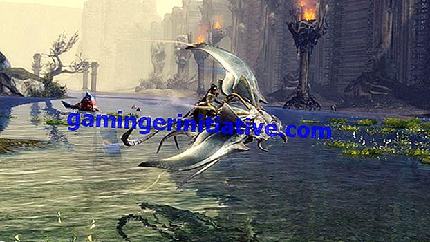 Guild Wars 2 (GW2): Hur man får en monter