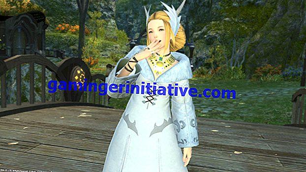 Новые Final Fantasy XIV Скриншоты хвастаются Обновлениями Фото Режима